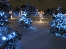 Chinguacousy Park Christmas Lights
