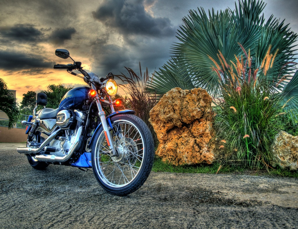 harley davidson jigsaw puzzle in cars bikes puzzles on. Black Bedroom Furniture Sets. Home Design Ideas