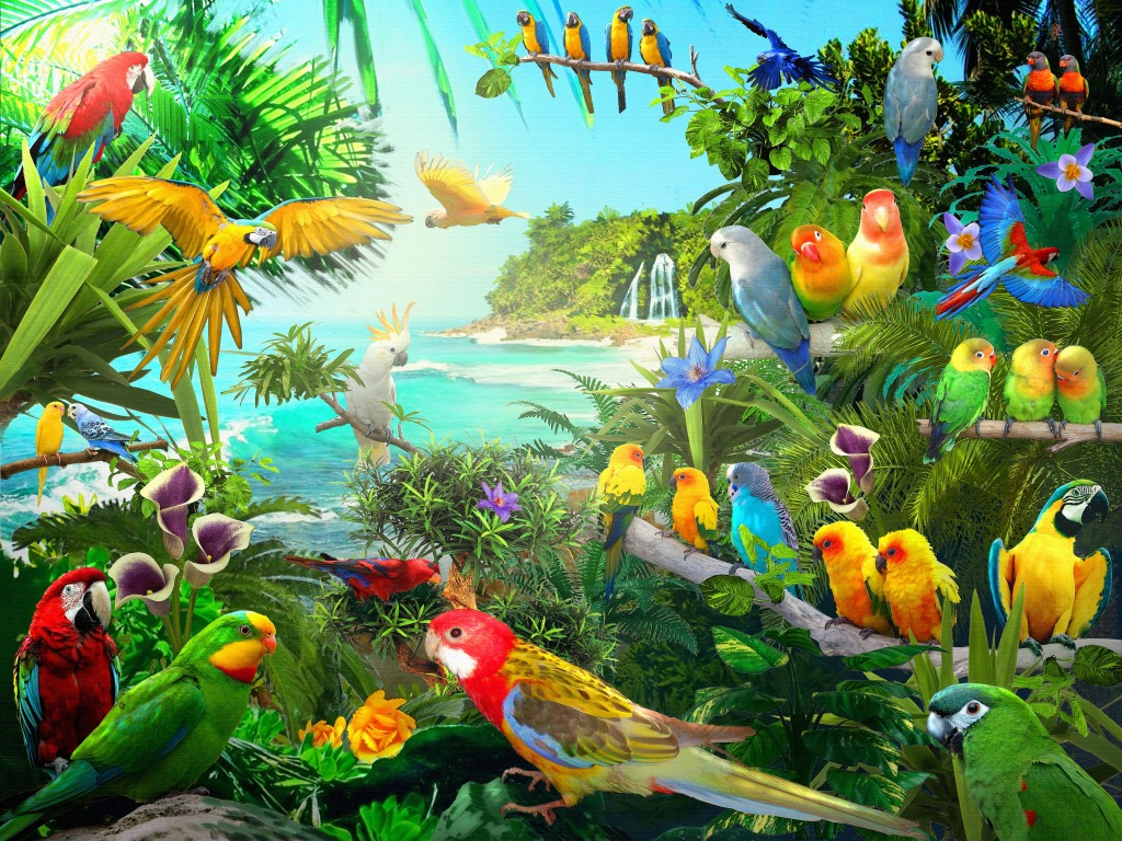 Parrots Jigsaw Puzzle In Kids Puzzles Puzzles On