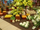 Fruit and Veg, Chelsea Flower Show