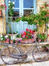 Frames, Wheels and Flowers - Sicily, Italy
