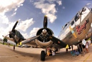 """Sentimental Journey"" B-17"