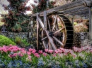 Water Wheel near the Old Church
