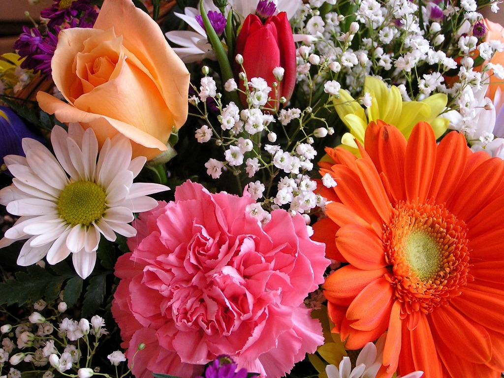 Birthday Blooms jigsaw puzzle in Puzzle of the Day puzzles on TheJigsawPuzzle