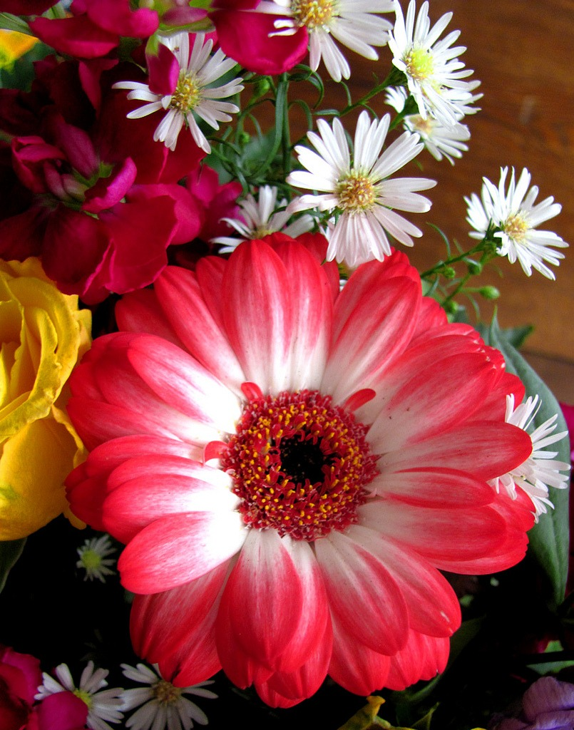 Sweet Flowers For My Birthday Jigsaw Puzzle In Flowers Puzzles On