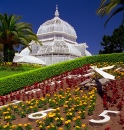 Golden Gate Park Conservatory Of Flowers