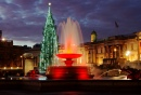 Christmas Eve on Trafalgar Square, London