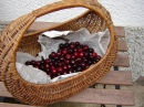 One Kilo Cherries