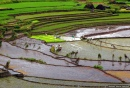 Nagacadan Rice Terraces, Philippines