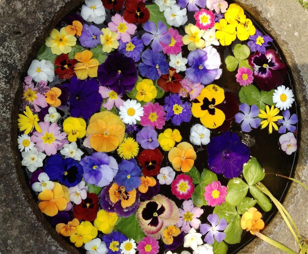Japanese Flower Arrangement jigsaw puzzle in Flowers puzzles on TheJigsawPuzz