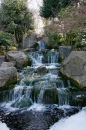 Waterfalls, Holland Park