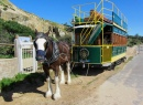 Victor Harbor Horse Drawn Tram, Australia