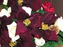 Deep Red Poinsettias