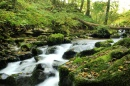 Caldbeck Waterfalls, Cumbria, UK