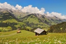 Berner Oberland in Summer
