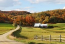 Jenne Farm in Reading, Vermont