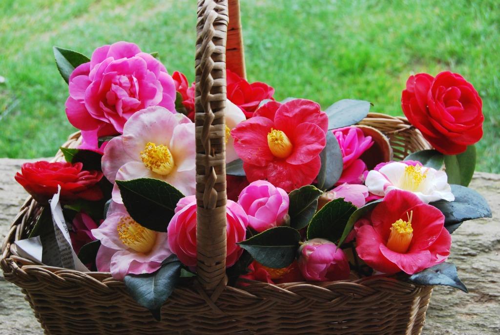 Flower Baskets Crossword Clue : Flower basket jigsaw puzzle in flowers puzzles on