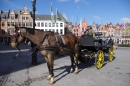 Carriage Rides in Bruges, Belgium