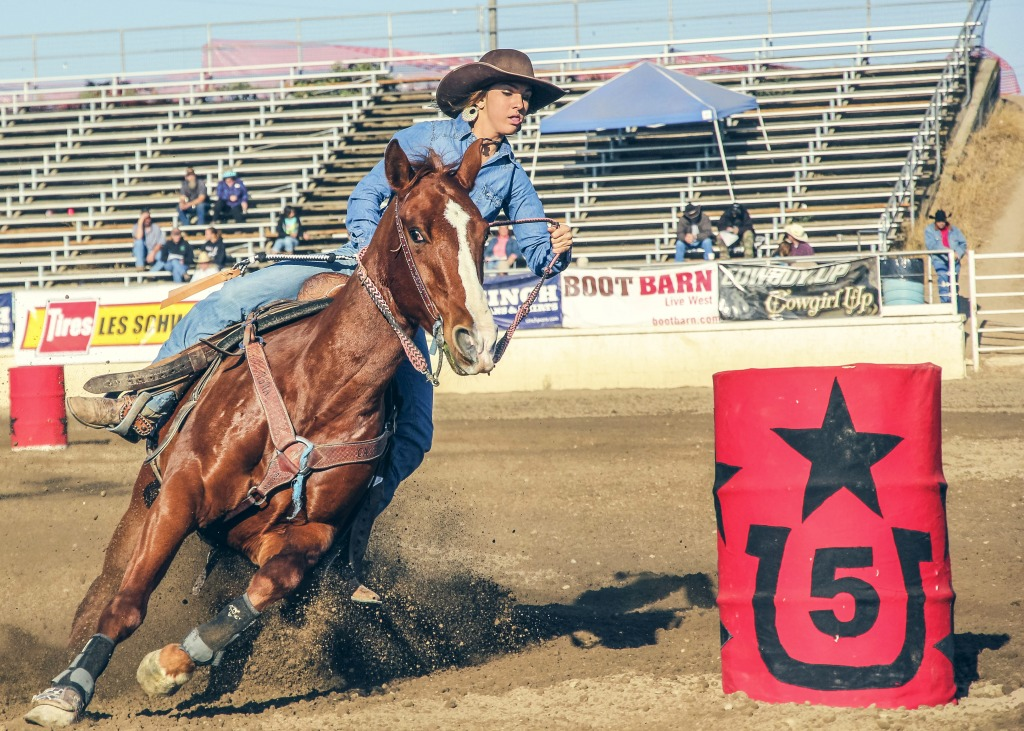 Rodeo Jigsaw Puzzle In People Puzzles On Thejigsawpuzzles Com
