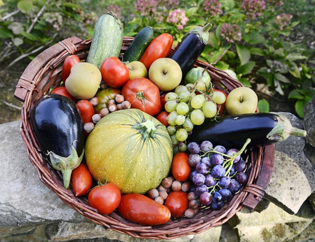 осень картинки фрукты и овощи для притягивает именно