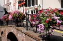 Holland: Flowers, Bikes and Bridges