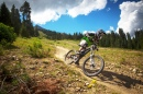 Crested Butte Downhill Trail