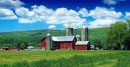 Pine Creek Valley Farm