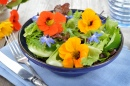 Fresh Summer Salad with Nasturtium