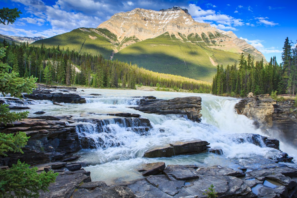 Athabasca Falls In Jasper Np Jigsaw Puzzle In Waterfalls Puzzles On Thejigsawpuzzles Com