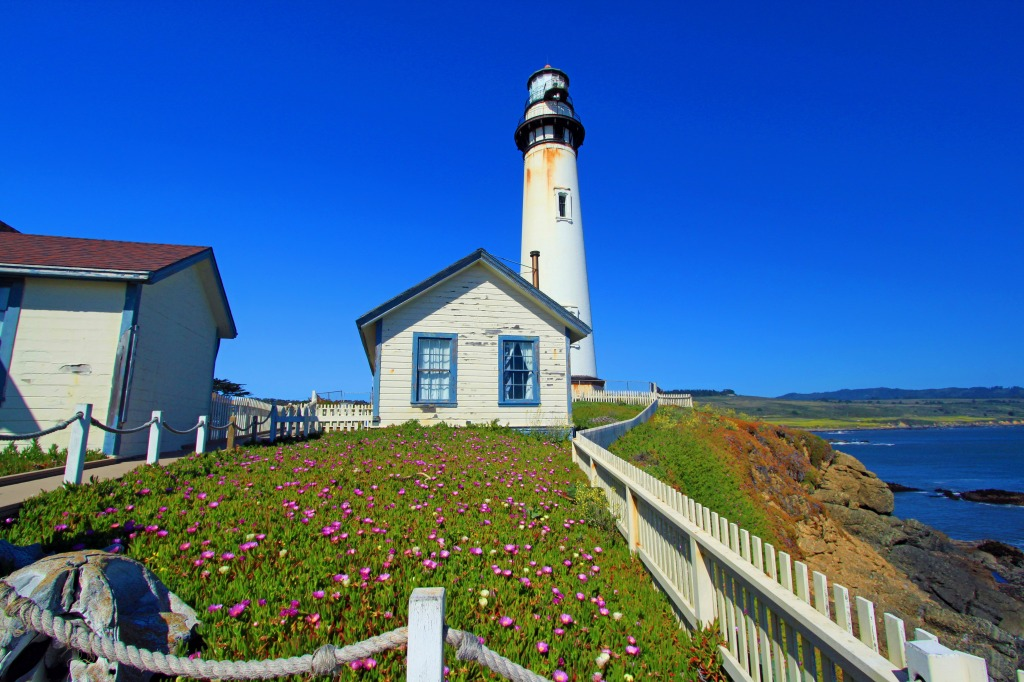 Pigeon Point Lighthouse, California jigsaw puzzle in Great ...