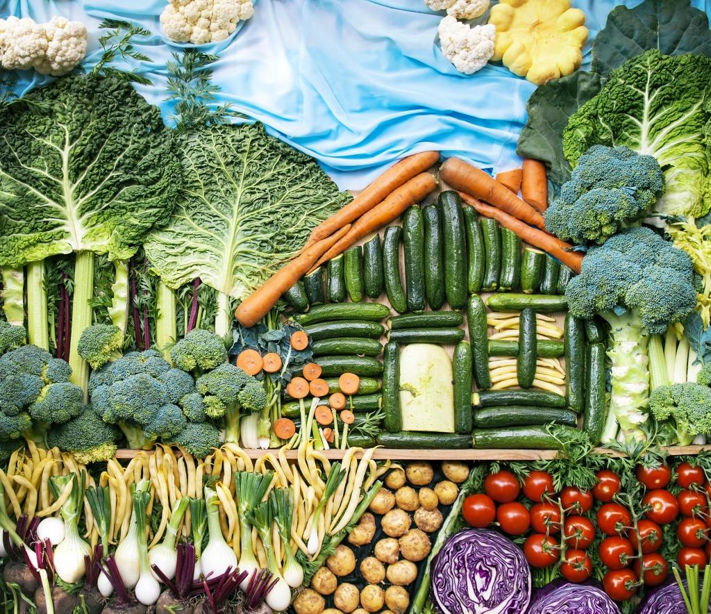 Vegetable landscape jigsaw puzzle in fruits veggies for Vegetable landscape