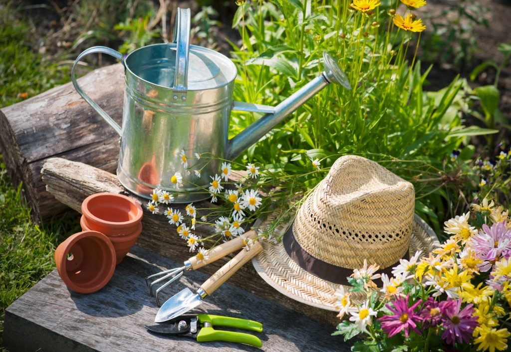 Gardening tools and a straw hat on the grass in the garden for Gardening tools crossword