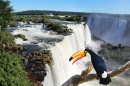 Iguazu Falls and a Giant Toucan