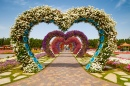 Hearts Way in Dubai Miracle Garden