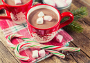Hot Winter Chocolate