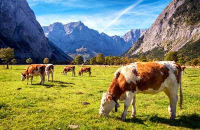 Karwendel Mountains In Austria