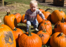 Amy among the Pumpkins