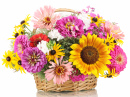 Bright Flowers in a Basket