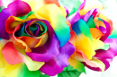 Handcrafted Rainbow Rose