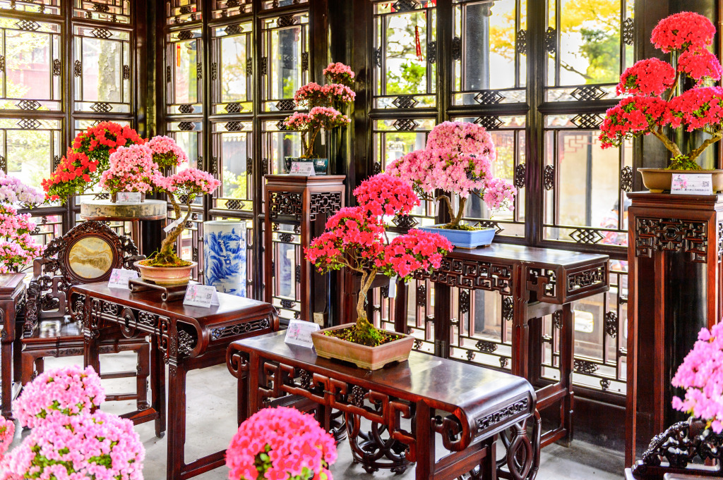 Chinese garden in suzhou jigsaw puzzle in flowers puzzles on for Garden pavilion crossword clue