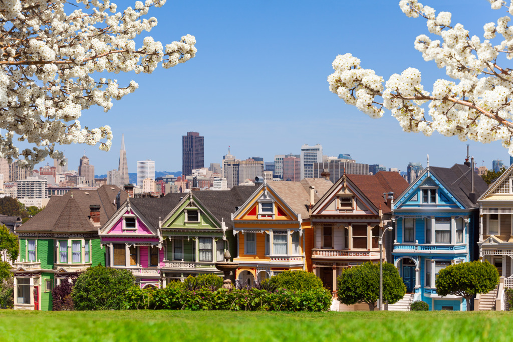 painted ladies in san francisco jigsaw puzzle in puzzle of the day puzzles on. Black Bedroom Furniture Sets. Home Design Ideas
