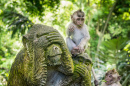 Sacred Monkey Forest of Ubud, Bali
