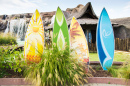 Hawaiian Surfboards