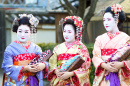 Three Young Geishas in Kyoto