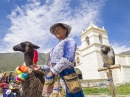 Quechua Indian Woman with a Llama