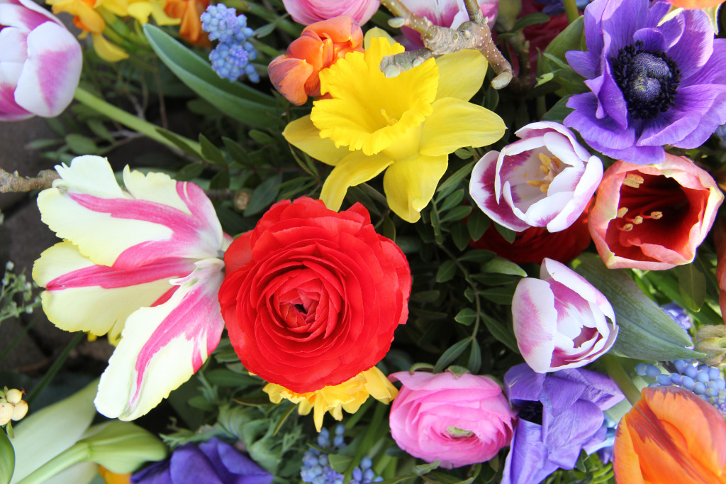 Bouquet of Spring Flowers jigsaw puzzle in Puzzle of the Day puzzles ...