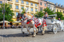 Horse Carriages in Krakow, Poland