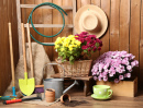 Free jigsaw puzzles jigsaw puzzle games at for Gardening tools crossword