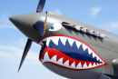 P-40 Warhawk Built in 1941