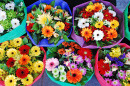 Colorful Bouquets at the Market